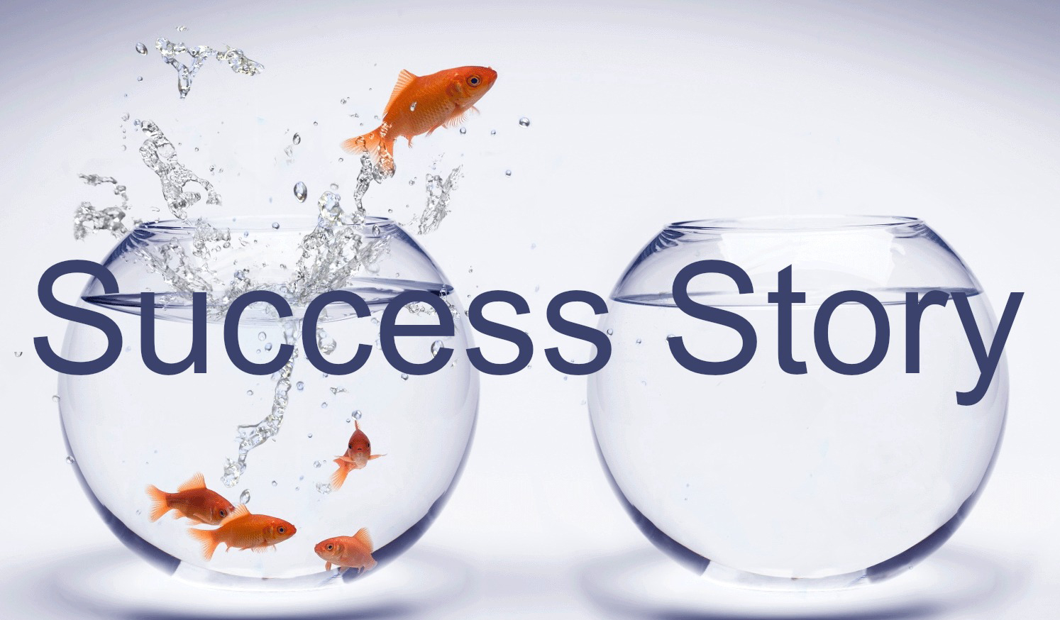 SUCCESS STORIES PDF DOWNLOAD